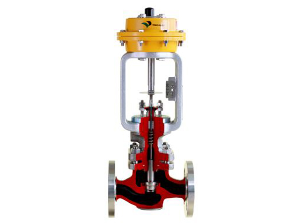 Globe type single seated control valve